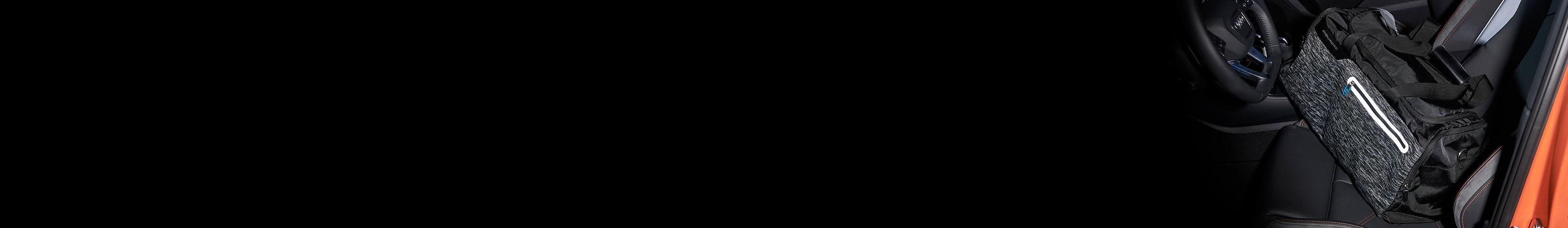 Borsoni